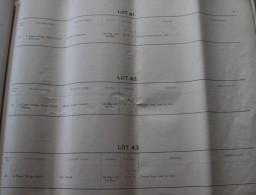 Lot 41-43