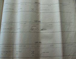 Lots 71-73
