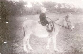 James Foy - 1919